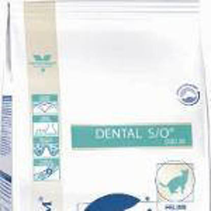 Picture of Royal Canin Cat Dental S/O 1.5kg